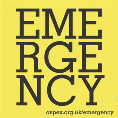 http://www.helenannaflanagan.com/files/gimgs/th-124_emergency1.png